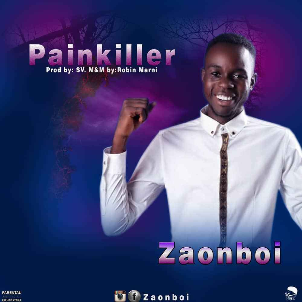 PAINKILLER - Zaonboi
