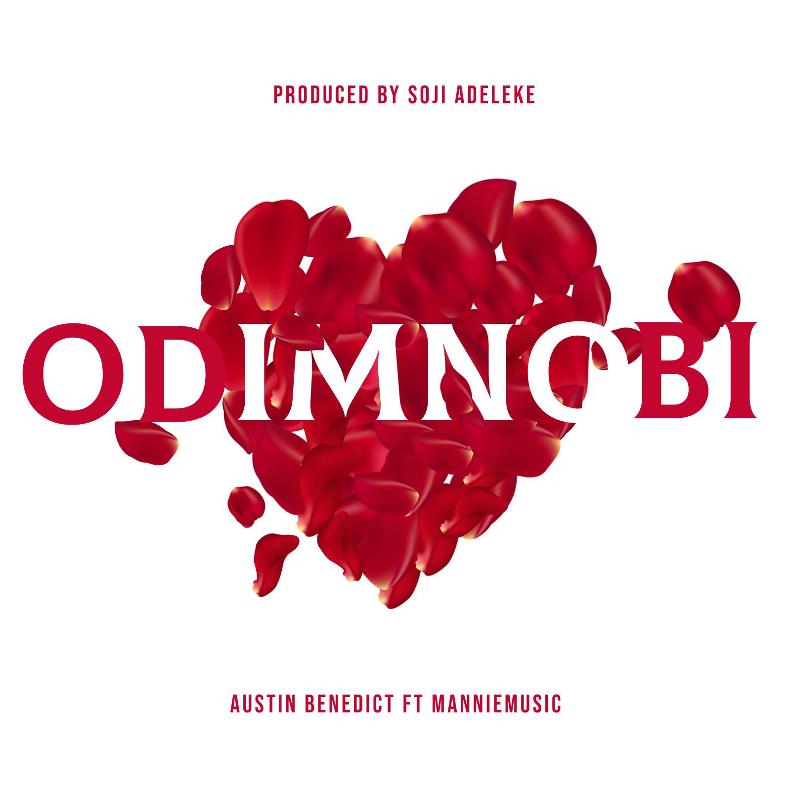 IDIMNOBI - Austin Benedict
